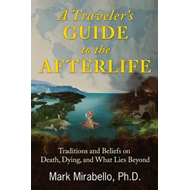Traveler's Guide to the Afterlife (BOK)
