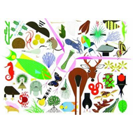 Charley Harper's Animal Kingdom (BOK)