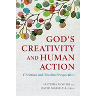 God's Creativity and Human Action (BOK)
