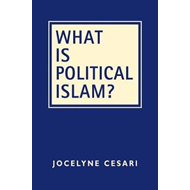 What Is Political Islam? (BOK)