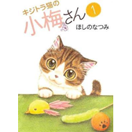 Plum Crazy! Tales of a Tiger-Striped Cat (BOK)
