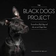Black Dogs Project (BOK)