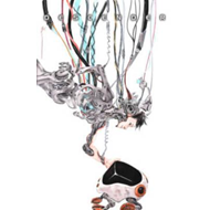 Descender Volume 2: Machine Moon (BOK)