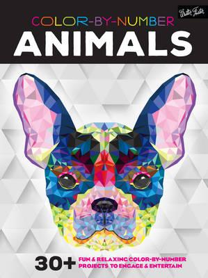 Color by Number: Animals (BOK)