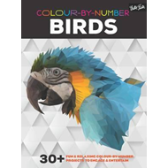 Colour-By-Number: Birds (BOK)