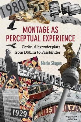 Montage as Perceptual Experience (BOK)