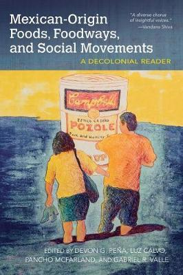 Mexican-Origin Foods, Foodways, and Social Movements (BOK)