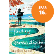 Produktbilde for Finding Serendipity (BOK)