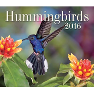 Hummingbirds 2016 (BOK)