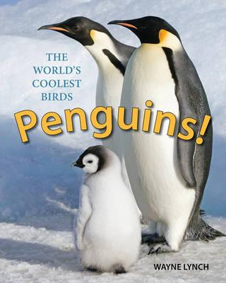 Penguins! (BOK)