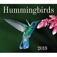 Hummingbirds 2018 (BOK)