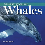 Exploring the World of Whales (BOK)