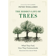 Hidden Life of Trees (BOK)