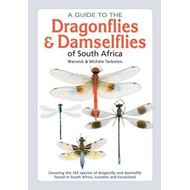 guide to the dragonflies & damselflies of South Africa (BOK)
