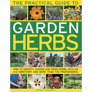 Practical Guide to Garden Herbs (BOK)
