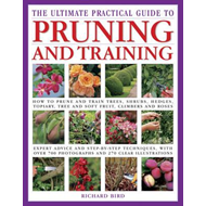 Ultimate Practical Guide to Pruning and Training (BOK)