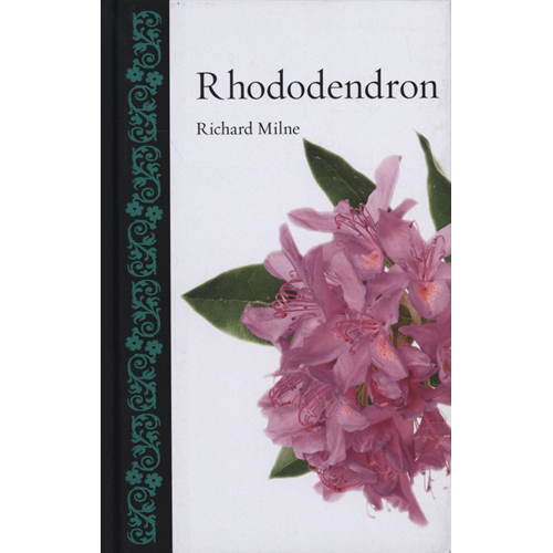 Rhododendron (BOK)