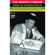 Mighty Stream (BOK)