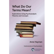 What Do Our Terms Mean? (BOK)