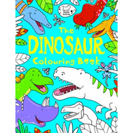 Dinosaur Colouring Book (BOK)