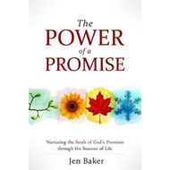 Power of a Promise (BOK)