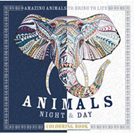 Animals Night & Day Colouring Book (BOK)