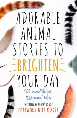 Adorable Animal Stories to Brighten Your Day (BOK)