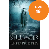Produktbilde for Still Water (BOK)