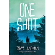 Produktbilde for One Shot (BOK)