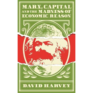 Marx, Capital and the Madness of Economic Reason (BOK)