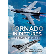 Tornado in Pictures (BOK)