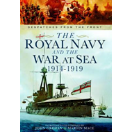 Royal Navy and the War at Sea - 1914-1919 (BOK)