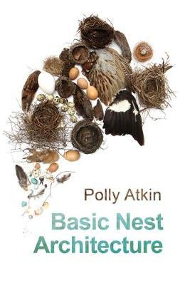 Basic Nest Architecture (BOK)