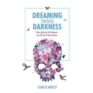 Dreaming through Darkness (BOK)