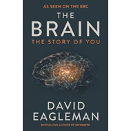 Produktbilde for The Brain - The Story of You (BOK)