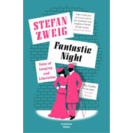 Produktbilde for Fantastic Night (BOK)