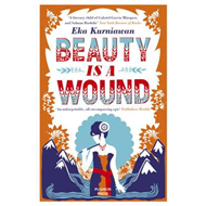 Beauty is a Wound (BOK)
