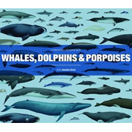 Whales, Dolphins and Porpoises (BOK)