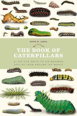 Book of Caterpillars (BOK)