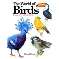 World of Birds (BOK)
