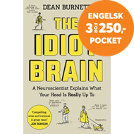Produktbilde for Idiot Brain (BOK)