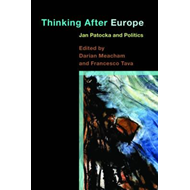 Thinking After Europe (BOK)