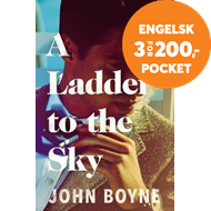 Produktbilde for Ladder to the Sky (BOK)