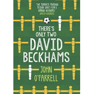 There's Only Two David Beckhams (BOK)