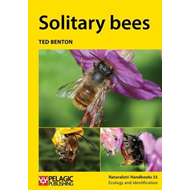 Solitary bees (BOK)