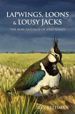 Lapwings, Loons and Lousy Jacks (BOK)