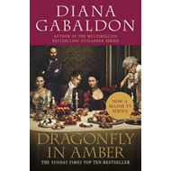 Dragonfly In Amber (BOK)