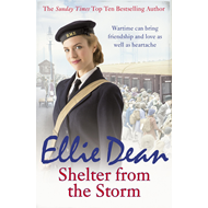 Shelter from the Storm (BOK)