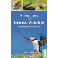 Summer of British Wildlife (BOK)