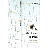 In the Land of Pain (BOK)